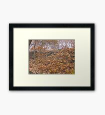 Image one hundred and sixty seven Framed Print