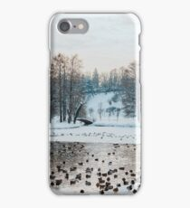 Ducks And Seagull Birds On Frozen Lake In Winter iPhone Case/Skin