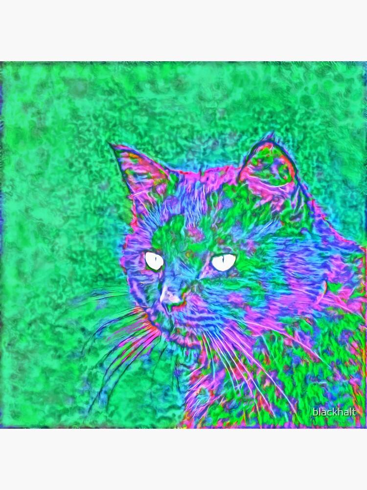Ninja Cat, Predator by blackhalt