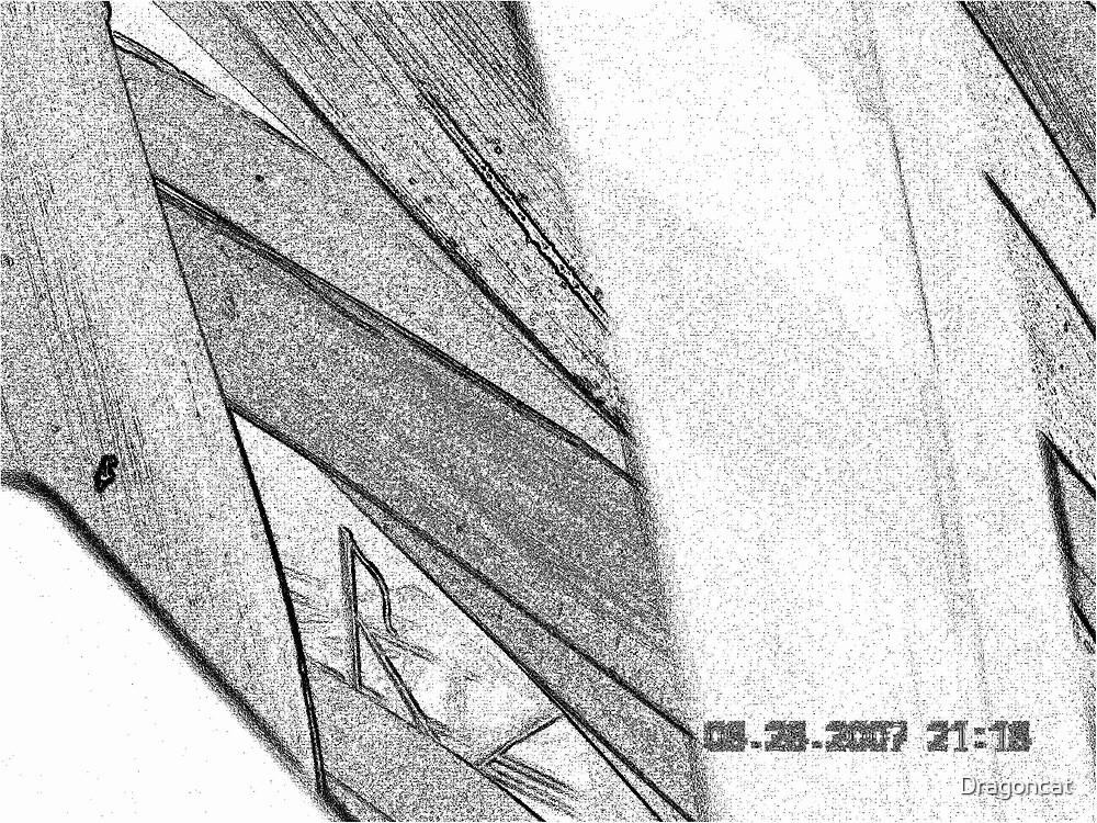 Lily Leaf Close up of Leaf no. 03 by Dragoncat
