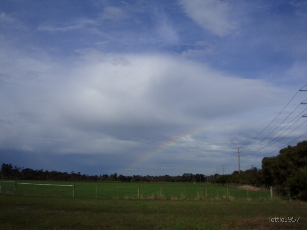 Rainbow  by lettie1957