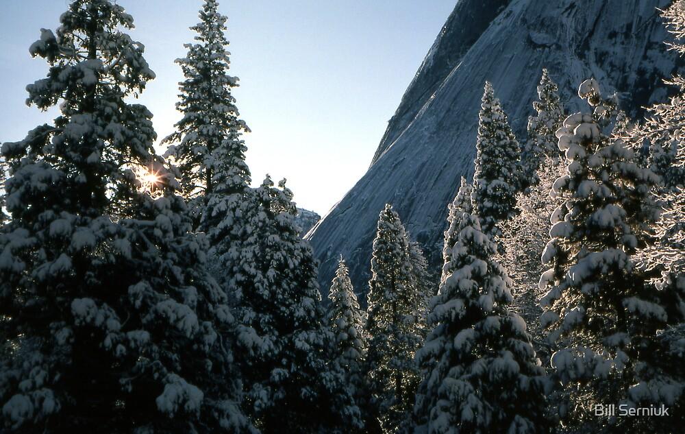 Winter Morning by Bill Serniuk