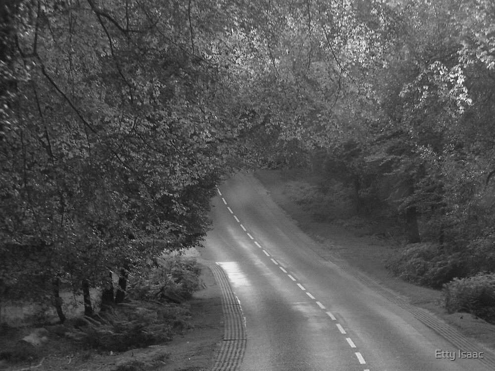 hidden path by Etty Isaac