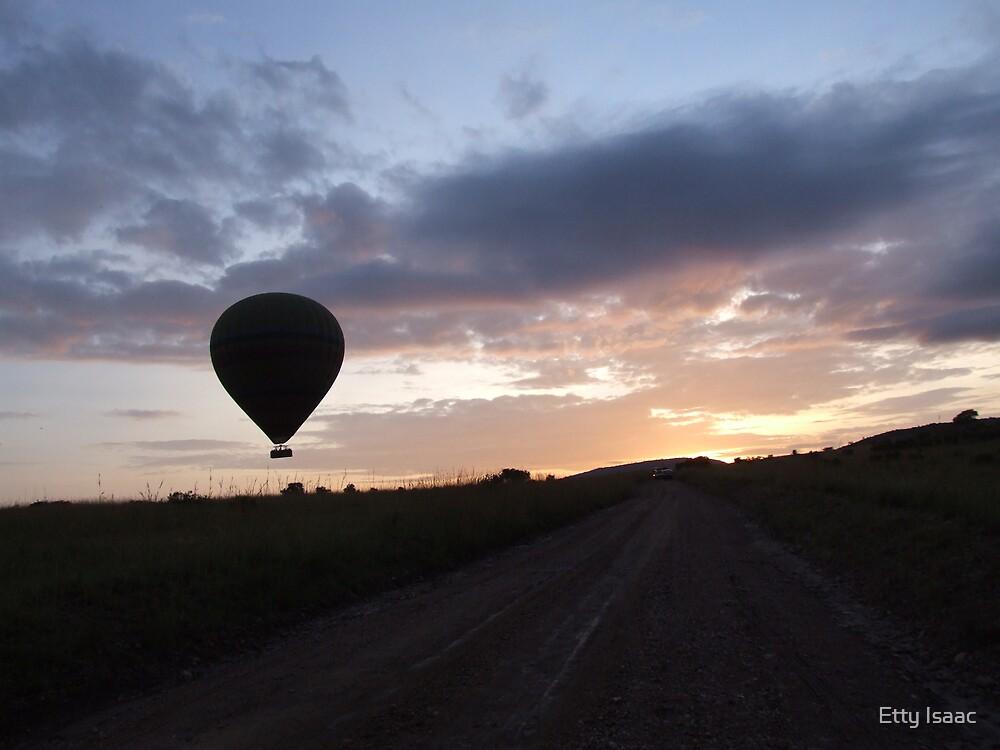 Fly away by Etty Baruch