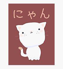 Kawaii Little Cat Photographic Print