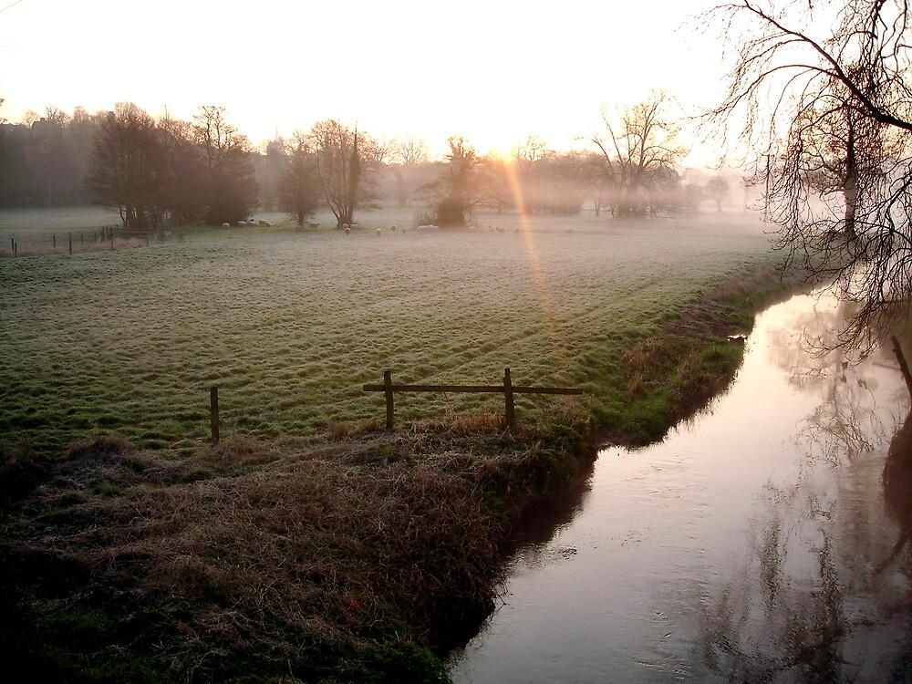 River at Dawn by rljohns