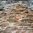 Stone Wall by Apple Tree Photography