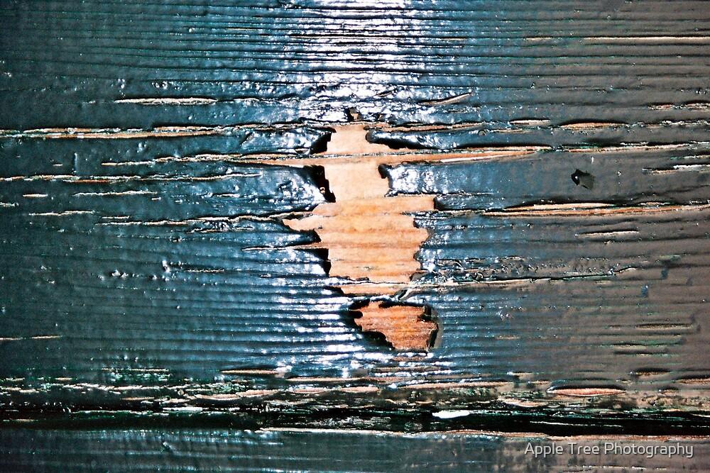 Door ! by Apple Tree Photography