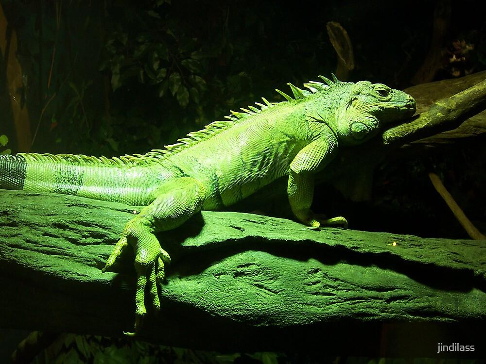 green liz by jindilass