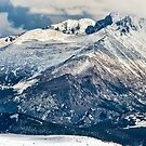 Snow Palaces of Trail Ridge Road by Gregory J Summers
