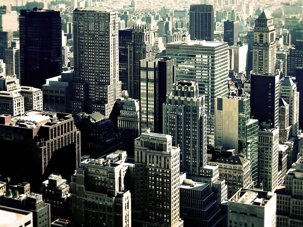NYC Blocks by Adrian Richardson