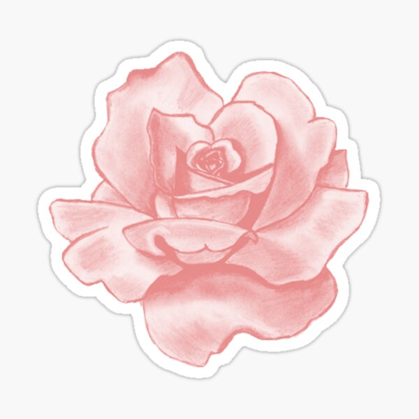rose rose Sticker