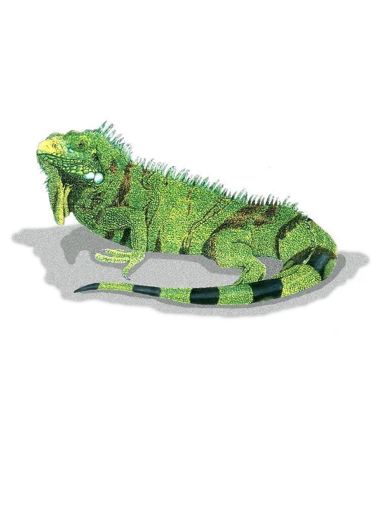 Reptilian Influence by kurtmarcelle