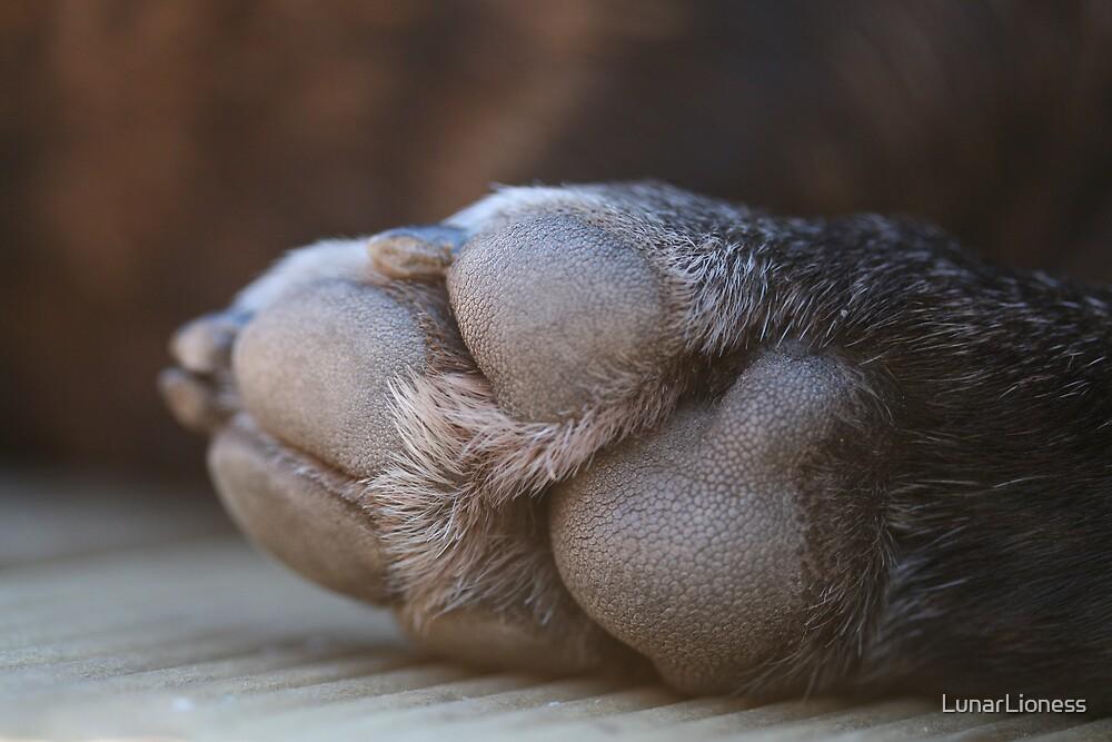 Dog Paw by LunarLioness