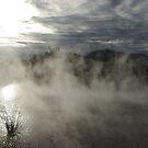 Rotarua lake mists at sunset by Ashley Ng