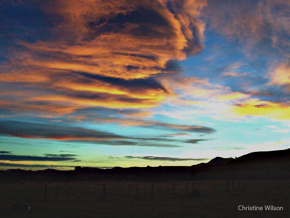 Wairarapa Sunset  by Christine Wilson