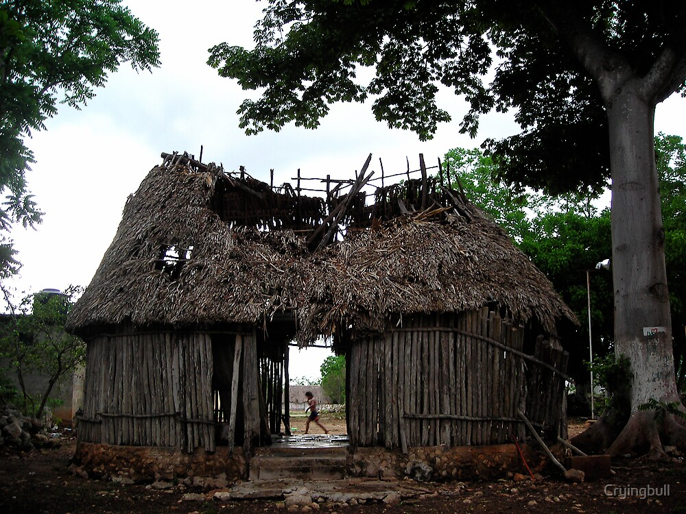 Broken Mayan Hut, Ek-balam, Mexico by Cryingbull