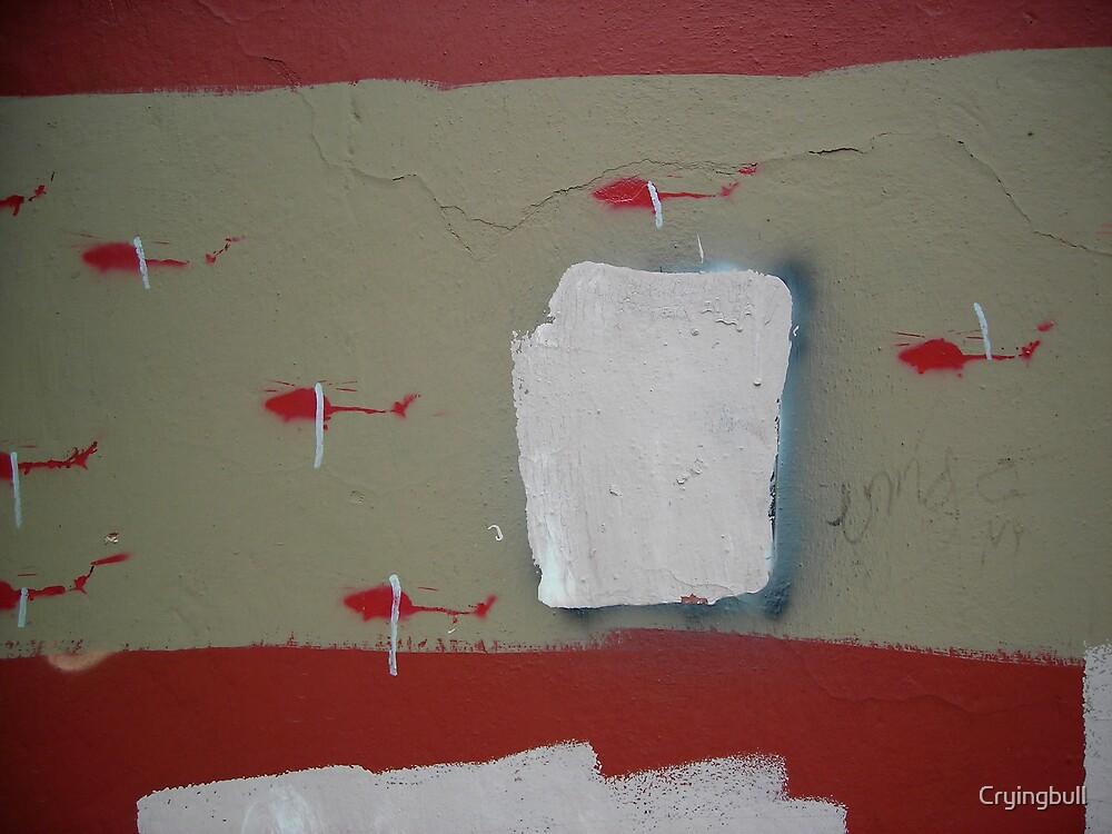 Graffiti on Graffiti, Oaxaca, Mexico by Cryingbull