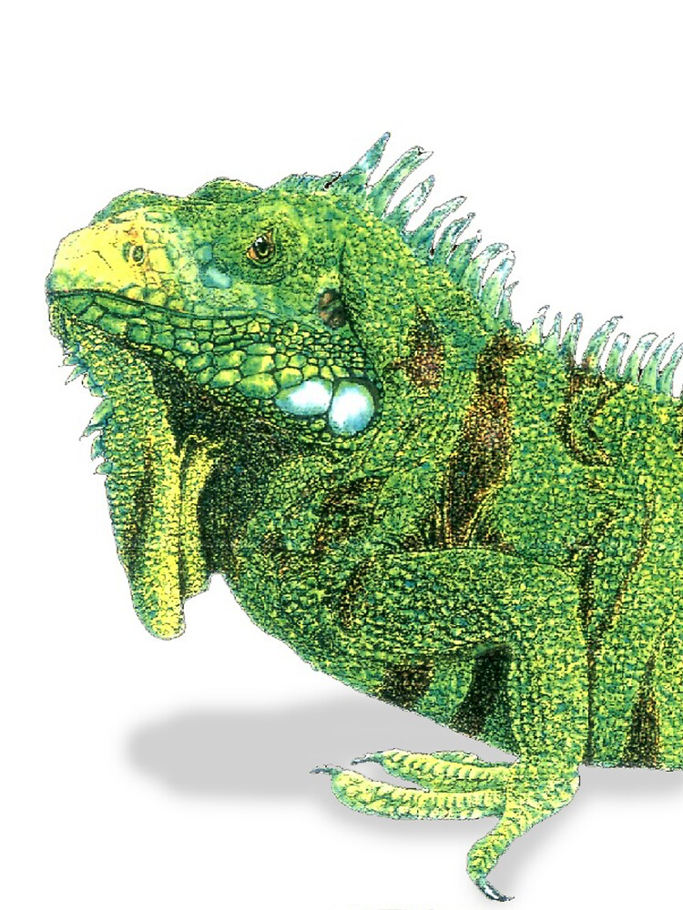Iguan Profile by kurtmarcelle
