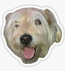 Clyde Sticker