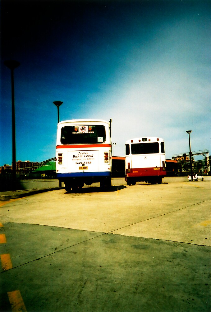 buses by scottwynn