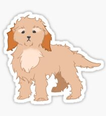 Cockapoo Sticker