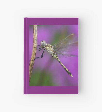 Fairies in my Garden Hardcover Journal