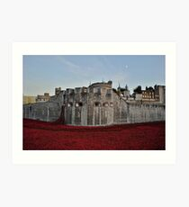 Poppies at the Tower of London - In the evening Art Print