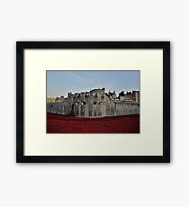 Poppies at the Tower of London - In the evening Framed Print