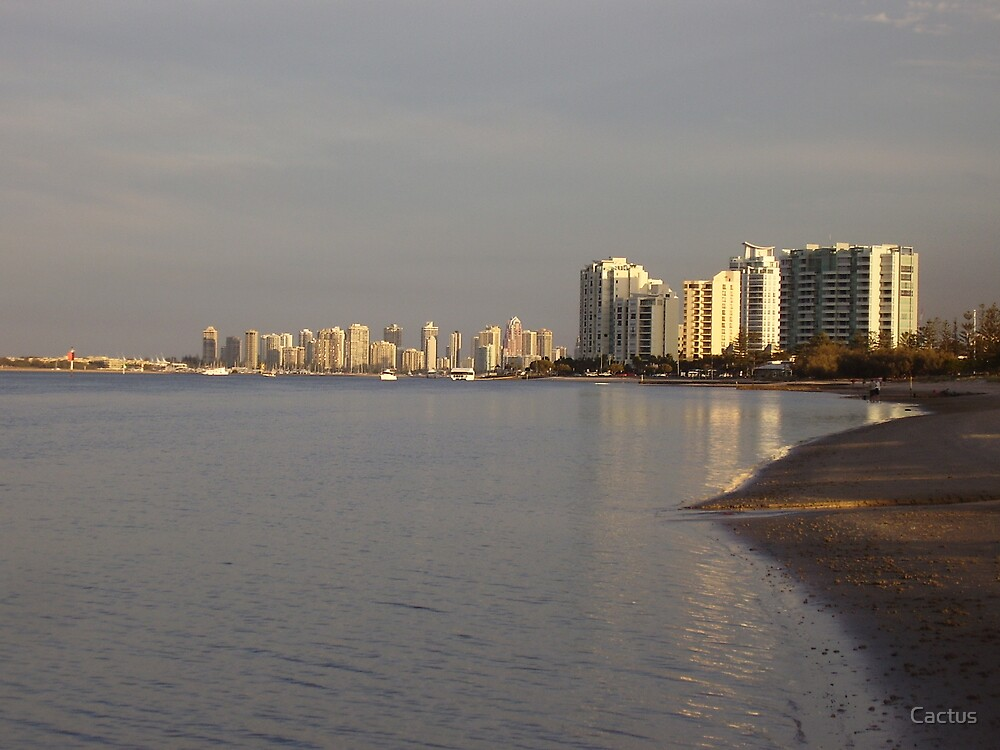 Gold Coast Broad Water, Queensland, Australia (2007) by Cactus