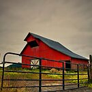 The Old Red Barn ~ Plainview Oregon ~ by Charles & Patricia   Harkins ~ Picture Oregon