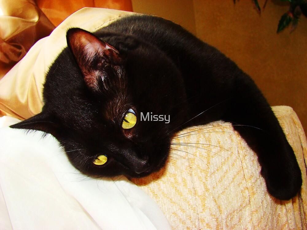 My spoiled princess  by Missy