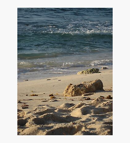 Piece of coral Photographic Print