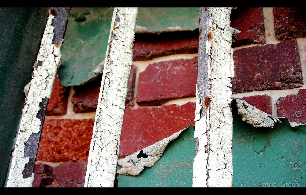Bricks and Paint by Patrick Steen