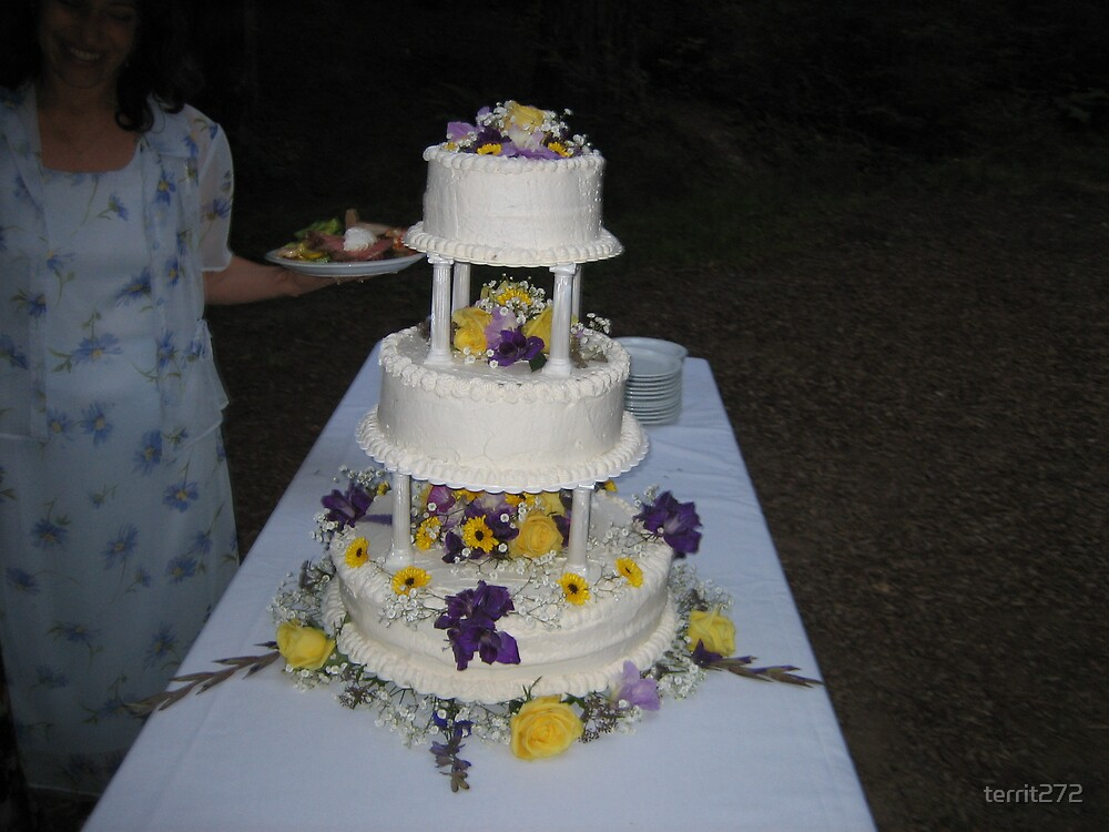 dei and jasons wedding cake by territ272