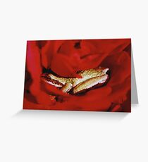 Frog in a Rose Greeting Card
