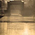 Bridge in morning sun and mist  by martinspixs