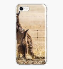 At the fence iPhone Case/Skin