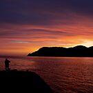 Vernazza Sunset by Tammy Hale