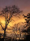 Sunset In Amherst by Ginny York