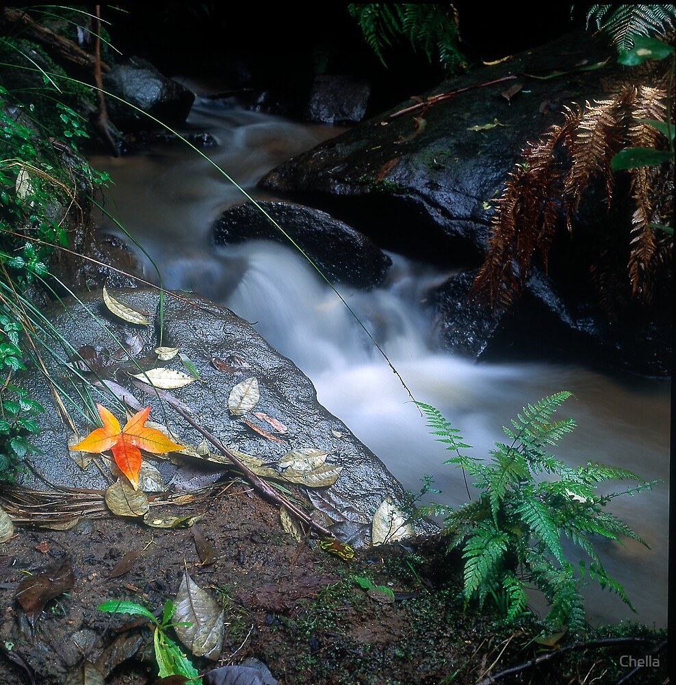 Beside the creek by Chella