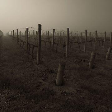 Misty Wine by rfbfmike
