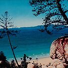 Above Rocky Bay - Magnetic Island by Cary McAulay