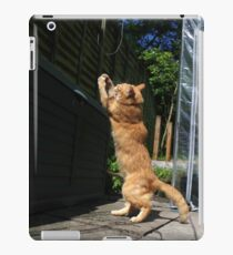 Ginger cat playing with string iPad Case/Skin