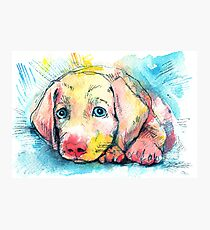 puppy on a blue background, watercolor sketch Photographic Print