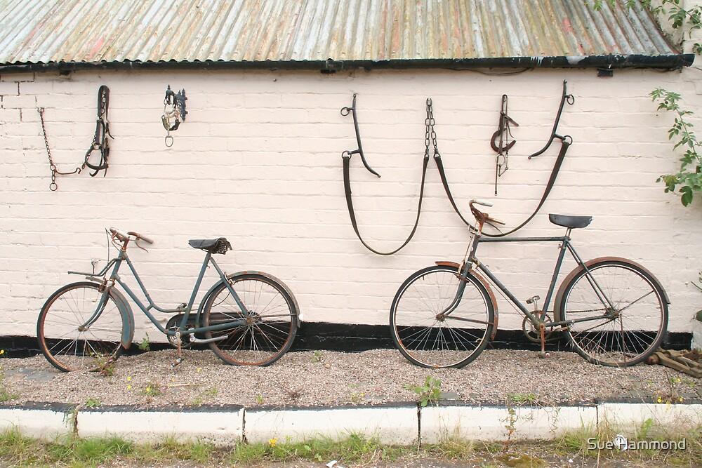 Pushbike by Sue Hammond