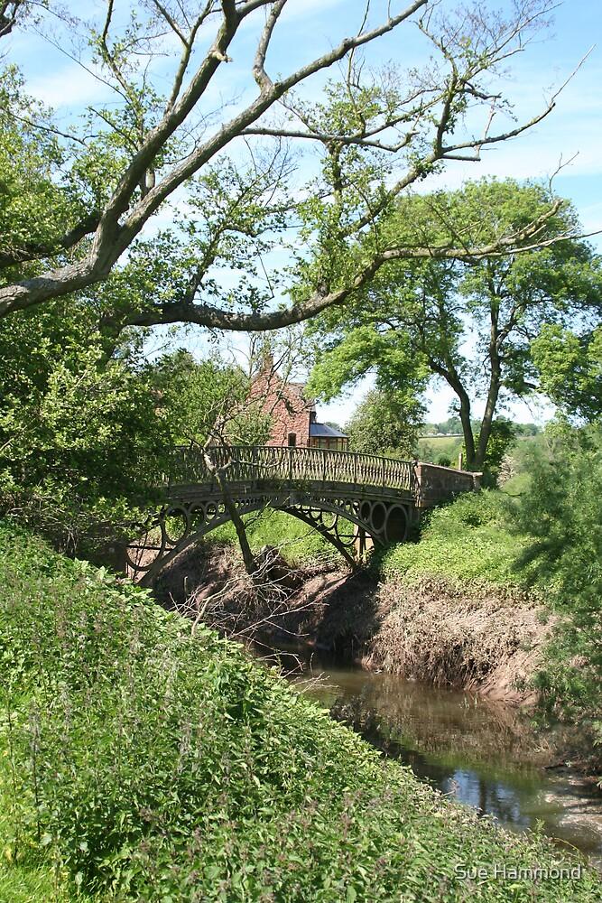 Cast iron bridge by Sue Hammond