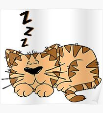 Cute Funny Cartoon Silly Sleeping Cat Character Doodle Animal Drawing Poster