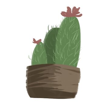 Cactus Potted Plant by Vulpies