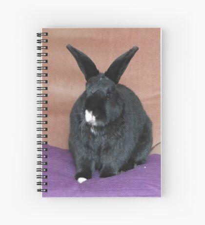 Enthroned Spiral Notebook